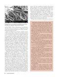 Ernest Henry Nickel (b. 1925) - Page 2