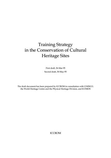 Training Strategy in the Conservation of Cultural ... - CIF - Icomos