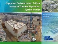 Digestion Pretreatment: Critical Issues in Thermal Hydrolysis System ...