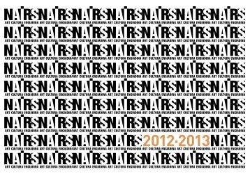 NAIRS-Doku_12-13_web