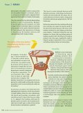 Focus - Industrialising Bamboo - Page 3