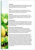 Melonen - SanLucar - Seite 6
