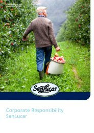 Corporate Responsibility SanLucar - United Nations Global Compact