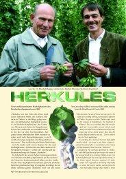 HERKULES - Verband Deutscher Hopfenpflanzer e.V.