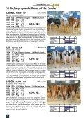 GHN-EXTRA-EUROTIER 2008 - GGI German Genetics International ... - Page 6