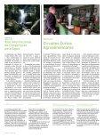 Jornal - Minha Terra - Page 4
