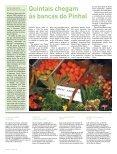 Jornal - Minha Terra - Page 6