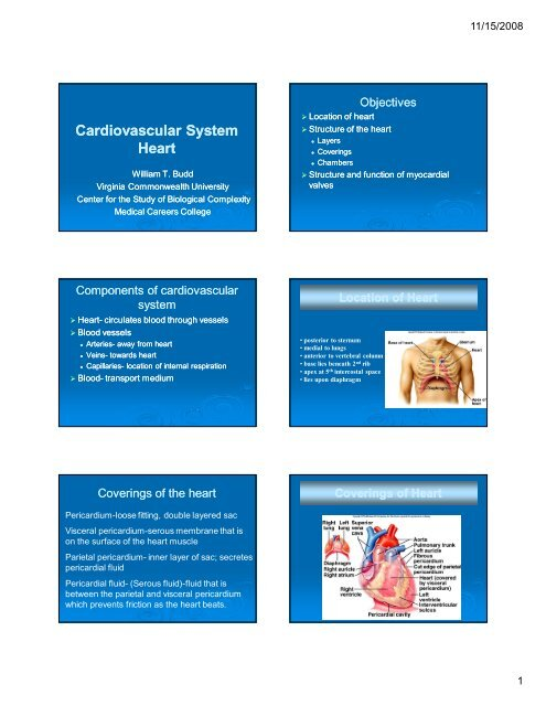 Cardiac Anatomy and Physiology ppt [Compatibility Mode]