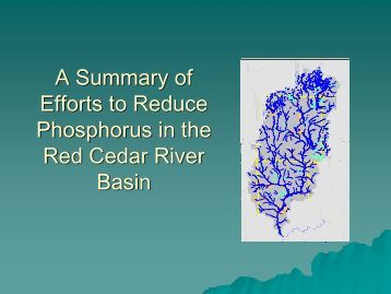 Phosphorus impacts in surface waters