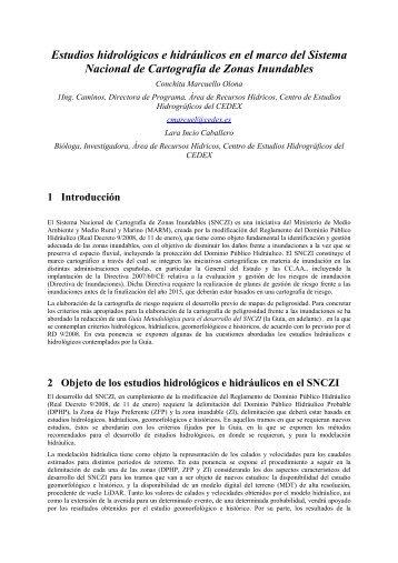 Estudios hidrológicos e hidráulicos en el marco del Sistema ...