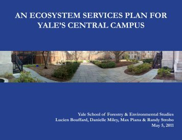 AN ECOSYSTEM SERVICES PLAN FOR YALE'S CENTRAL CAMPUS