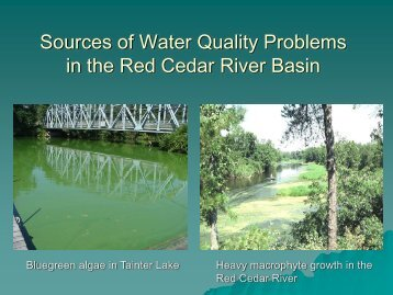 Sources of Water Quality Problems in the Red Cedar River Basin