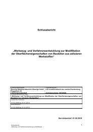 Werkzeug- und Verfahrensentwicklung zur Modifikation der ...