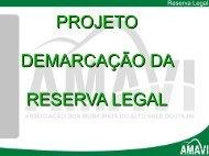 PROJETO DEMARCAÇÃO DA RESERVA LEGAL - AMAVI