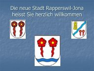 Wasserversorgung Rapperswil - vigw.ch