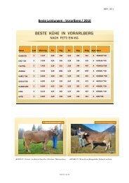 2d_Bericht neu - Braunvieh Vorarlberg