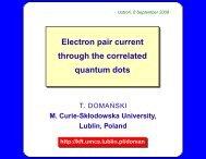the Kondo effect - Lublin