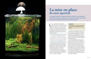 La mise en place du nano-aquarium - Ulmer