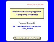 Renormalization Group approach to the pairing instabilities ... - Lublin