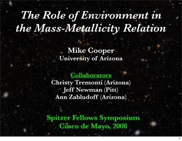 The Role of Environment in the Mass-Metallicity Relation