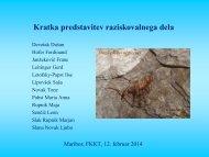 Predstavitev LIPOVSEK.pdf
