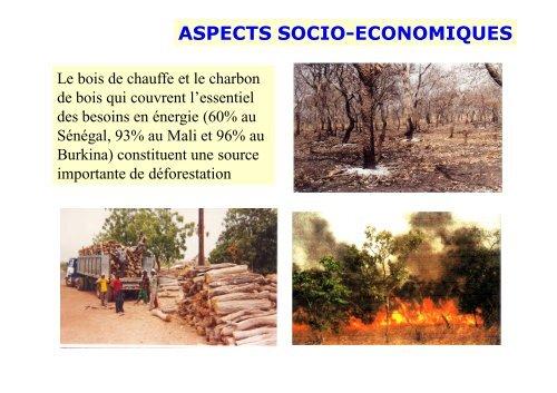 Profil Environnemental de l'Afrique au sud du Sahara par Dr ... - CSA