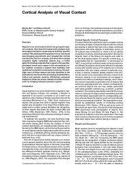 Cortical Analysis of Visual Context - Moshe Bar