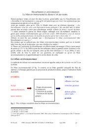 Biocarburants et environnement Le bilan environnemental du ... - CSA