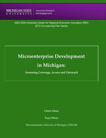 Microenterprise Development in Michigan - University Center for ...
