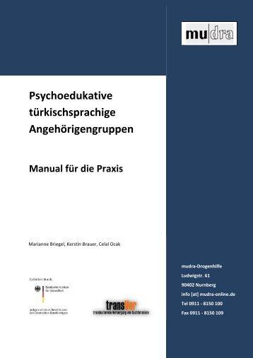 Briegel, M., Brauer, K. & Ocak, C. (2013). - transVer
