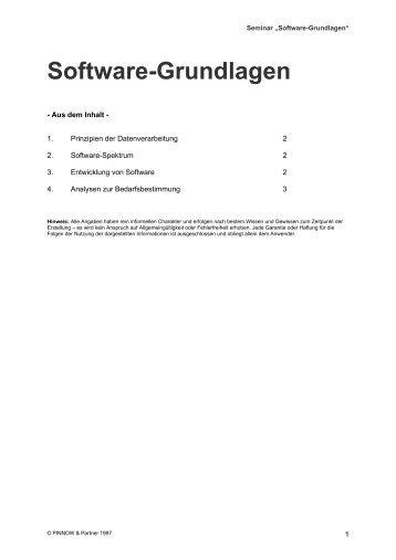 Grundlagen Software - Pinnow & Partner Unternehmens