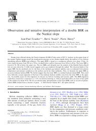 Observation and tentative interpretation of a double BSR on the ...