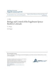 utah state beetle research.pdf