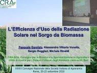 L'Efficienza d'Uso della Radiazione Solare nel Sorgo da ... - Siagr.org