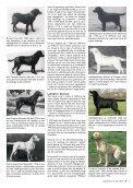 Gammeldags Lab - Minnows - Page 2