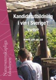 Kandidatutbildning i vin i Sverige? - Institutionen för geovetenskaper