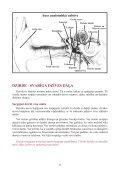 troksni-lab.qxd (Page 3) - Page 4