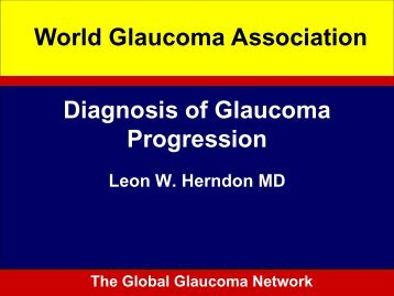 Diagnosis of Glaucoma Progression World Glaucoma Association