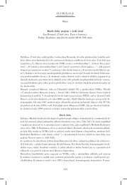 (nejen) v šedé zóně Jan Bernard, Z šedé zóny. Texty a ... - Iluminace