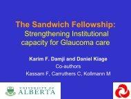 The Sandwich Fellowship - World Glaucoma Association