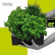Herbs - Enza Zaden