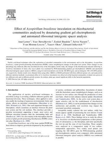Effect of Azospirillum brasilense inoculation on rhizobacterial ...