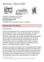 Pfarrbrief – Februar 2009 - THEATER - MYTHEN Senftenberg
