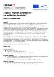 Das Infoblatt für den Workshop