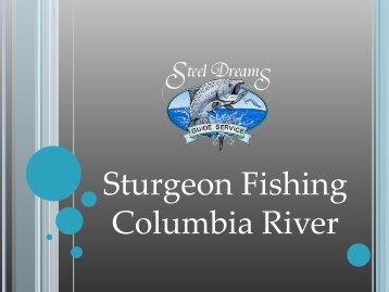 Sturgeon Fishing Columbia River