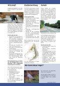Lesen Sie mehr...(pdf-Datei, 0,9 MB) - Page 3