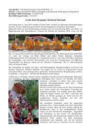 Große Kita-Olympiade Märkisch-Oderland - Viadrina