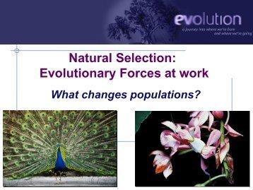 02-Chp-18-Natural-Selection-2010