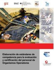 1 Identificación de tres estándares de competencia a desarrollar - GIZ