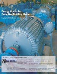 EEI Energy Audit Brochure - Efficiency Engineering Inc